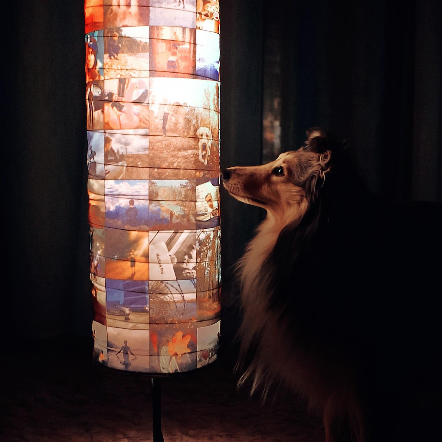 Светильник с фотографиями на заказ