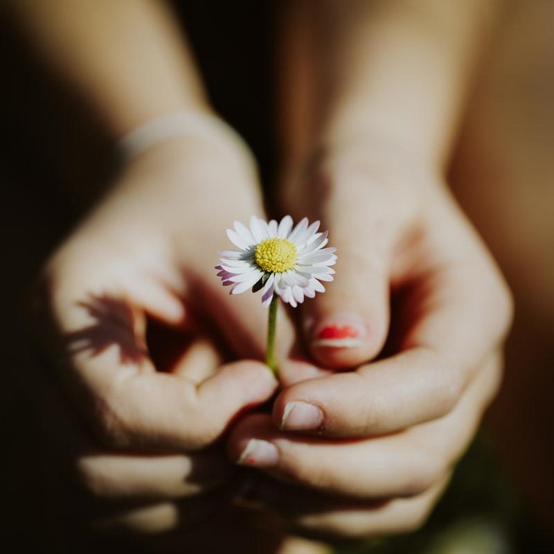 как красиво сфотографировать цветок в руках