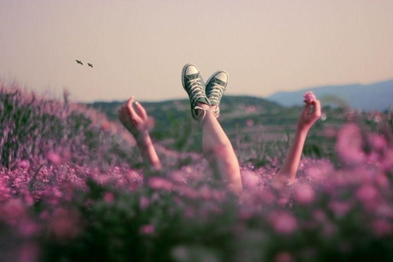 пример фотографии в цветочном поле