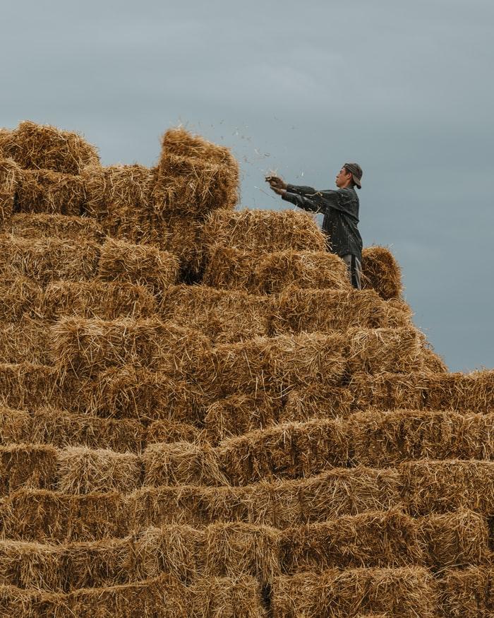 Идеи осенних фото со стогами сена