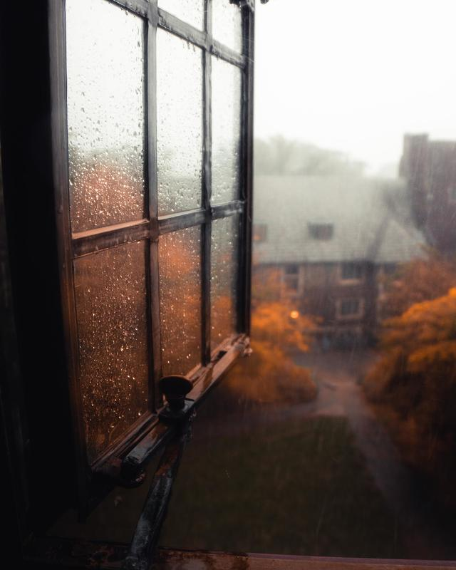 красивый пейзаж вид из окна осенью