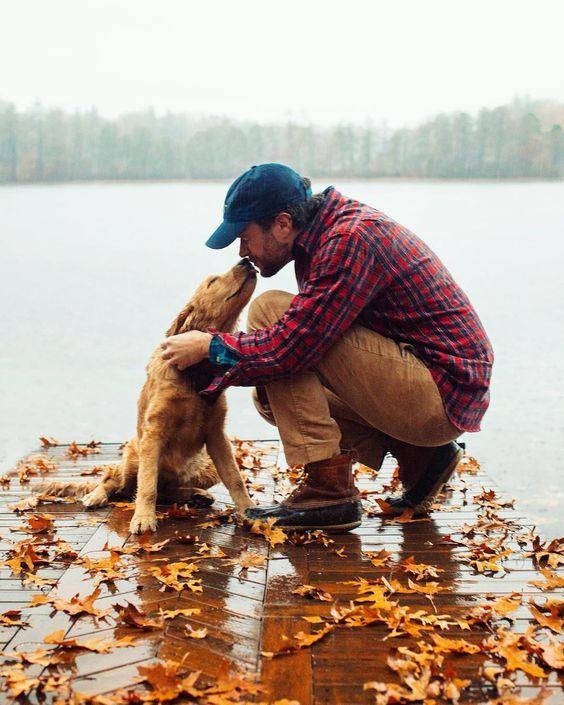 милые осенние фото с собаками