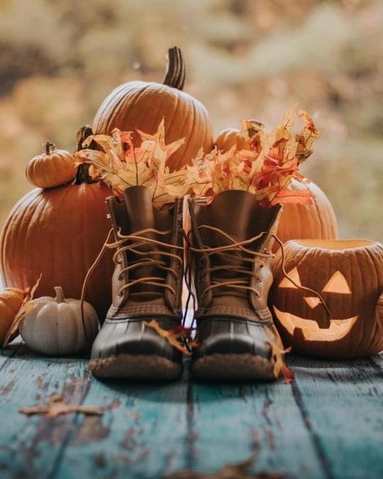 Фото на хеллоуин в октябре