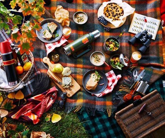 Осенний пикник в городском парке