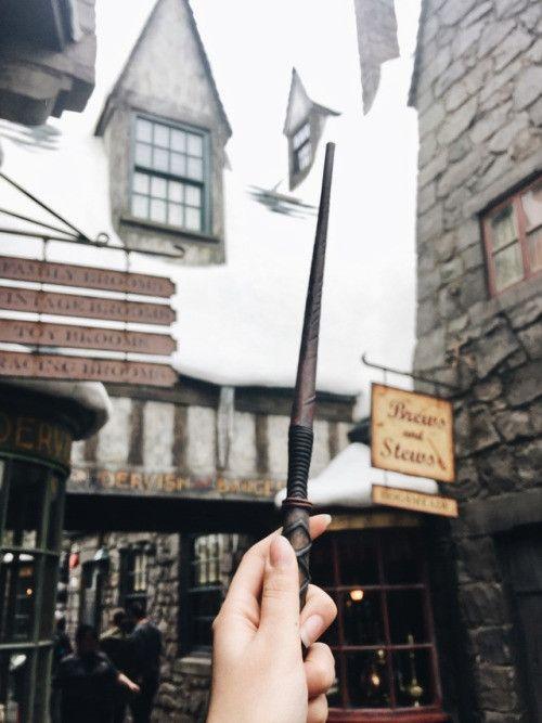волшебная бузинная палочка