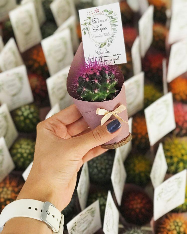 горшочные растения в качестве бонбоньерок на свадьбу
