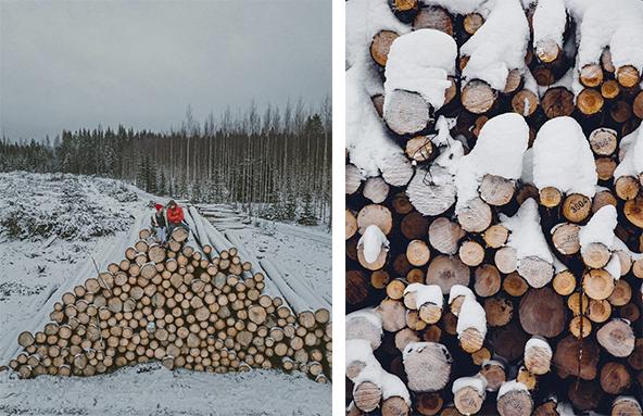 как провести креативную зимнюю фотосессию на природе