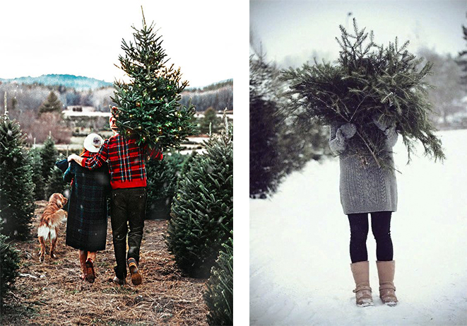 новогодняя фотосессия с елкой